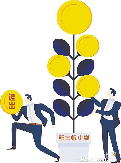 行业掀整顿风 新三板小贷公司退出逾两成