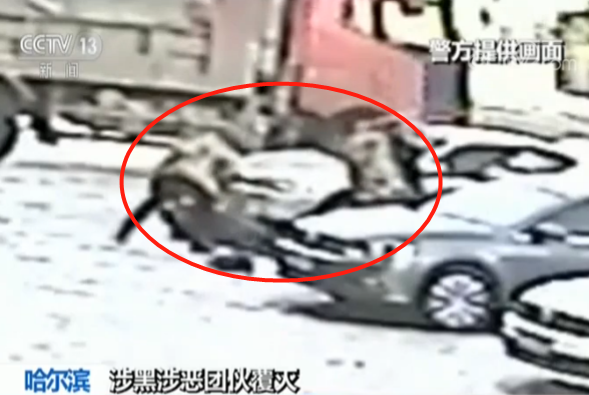 黑龙江一镇党委委员私藏枪支 暴力伤害上访人员