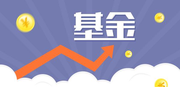 成长型基金是什么?有哪些?