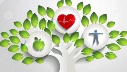 健康保险合同除外责任中的保险欺诈是什么