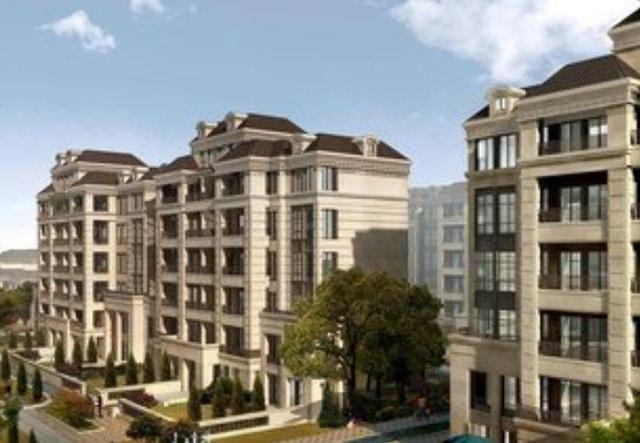 2020年房价真会降吗? 专家预测: 房价将会让人很受伤